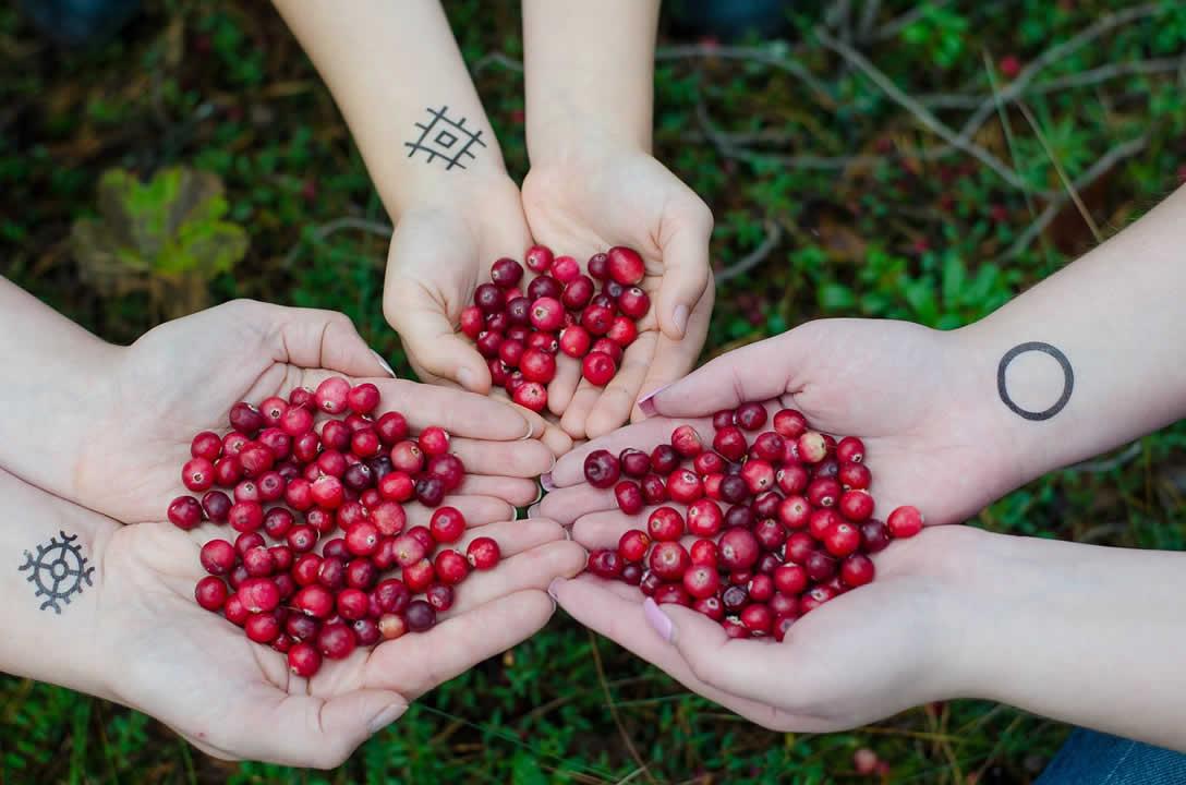 The Best Cranberry Supplements